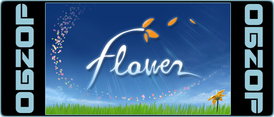 Review Flower